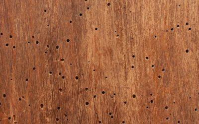 Tratamientos de madera